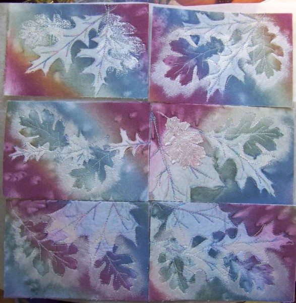 Sunprint leaves postcards, works in progress, sue andrus, andrusgardens