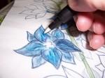 Adding Fuchsia with Pen