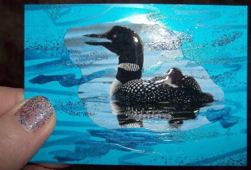 Single Loon Lake Card with Glittery Thumb
