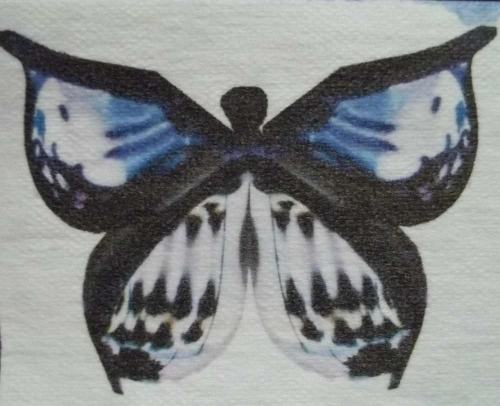 Butterfly Image printed on white Kraft Tex