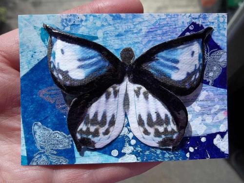 Butterfly on ATC