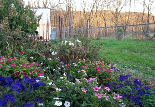 Studio Garden October 2012