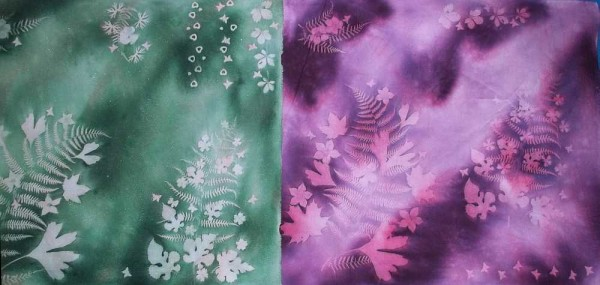 Green and Purple Sunprints