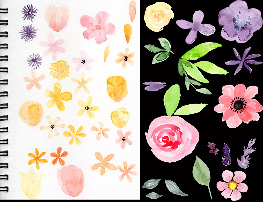 Sue Andrus, AndrusGardens sketchbook images and cut out images ready for designing.