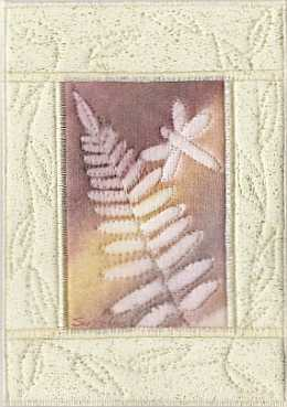 Peach fern dragonfly sunprint Mini Quilt, sue Andrus Gardens
